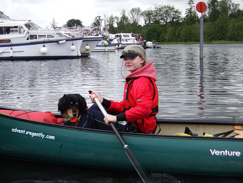 dogs paddling the Shannon Blueway