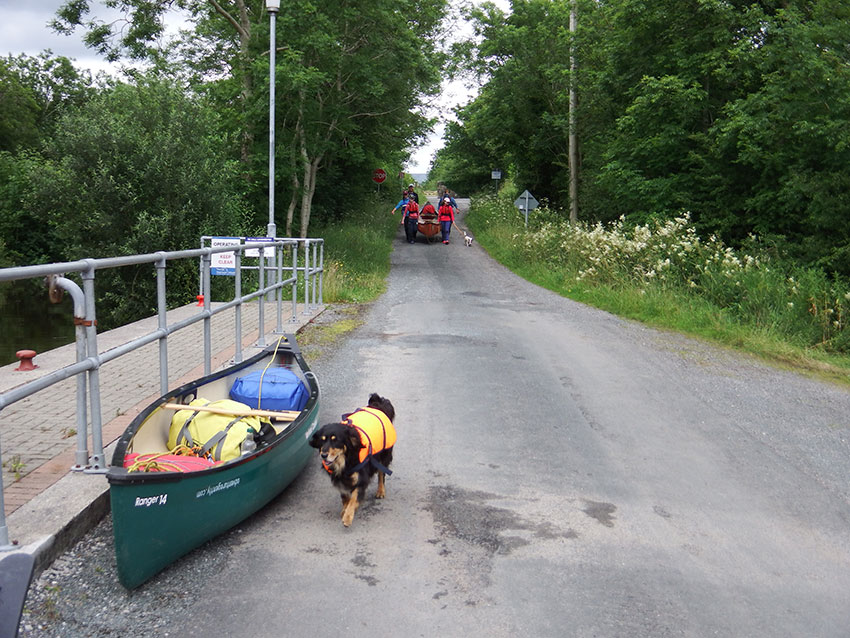 portaging on the Shannon Blueway doggies and all