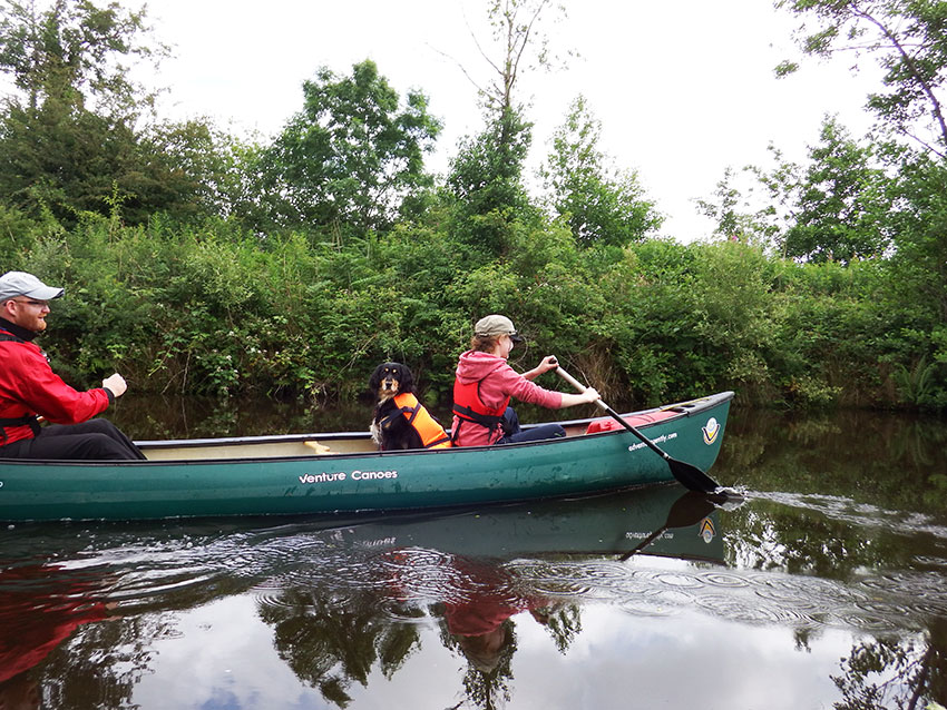 Paddle power on shannon blueway